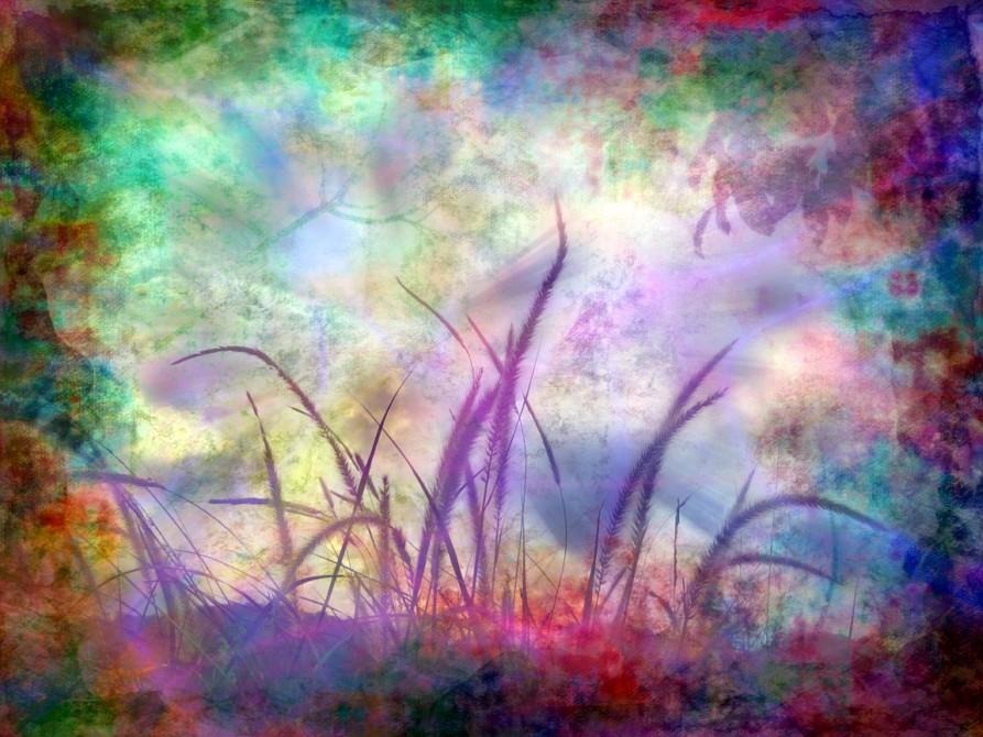 motyle - interpretacja snów